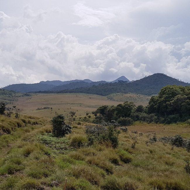 Horton Plains