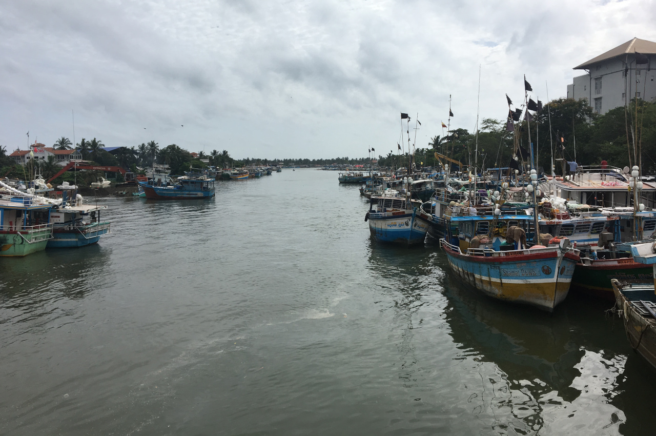 A voir Sri Lanka - Negombo