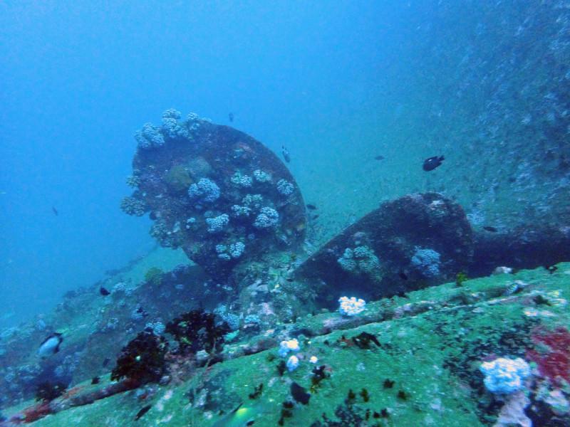 Epave dans l'océan au large de Colombo au Sri Lanka