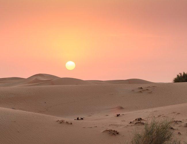 Nuit dans un oasis dans le désert de Dubaï